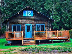 Day 25: cabin in the rain (Thunderstormnightmare) Tags: blue trees winter light brown grass outside cabin outdoor flag pacificnorthwest pnw snohomishcounty lakestevens wet rain ground