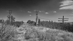 Abandoned Railway (joeqc) Tags: xe3 xf1024f4r xf1024mmf4rois fuji forgotten abandoned black bw blancoynegro blackandwhite white greytones kansas ks railroad mono monochrome