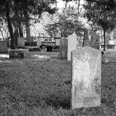Cemetery St Augustine Florida (jrpopfan) Tags: ancient ghost eerie halloween gravestone background cemetery trees tomb outside tombstone memory outdoors creepy broken traditional stone churchyard foggy old antique yard dramatic grave landscape headstone white texture scary light gothic decay silhouette christian graveyard dark spooky black dead fog tree misty death gray