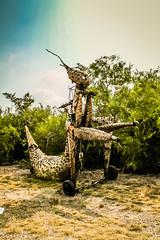 Roadtripping Texas Coastline (jrpopfan) Tags: sculpture rebelt3 photograph texas statue nature photography swamp art botanicalgarden livetexan corpuschristi
