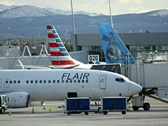 Flair 737-8K5 C-FBVS (kenjet) Tags: flair flairairlines jet plane flugzeug boeing airline airliner las klas mccarran lasvegas mccarraninternationalairport 738 737 737800 7378k5 cfbvs hapaglloyd travelservice sunwing cgkvp dahlr airport gate terminal