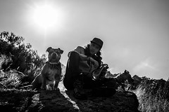 (_dingrid) Tags: retrato blancoynegro bnw blackandwhite pet perro