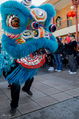 Year of the Rat_blue (scubadreamtime) Tags: chinesenewyear newyear portland cultural