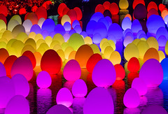 #futuretogether (buddythunder) Tags: singapore 2020 travel futuretogether teamlab eggs ovoids colour waves purple red blue reflections crowded pattern abstract telephoto