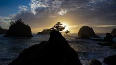 Secret Beach (jimberneike) Tags: secret beach brookings oregon ocean sunset haystacks lone tree pacific silhouette rock formations waves pnw pacificnorthwest