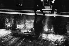 P1252137B Urban space (soyokazeojisan) Tags: japan osaka city street people pigeon station bw blackandwhite monochrome digital olympus em1markⅱ 1240mm 2020 light night
