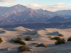(Brian Collins Photography) Tags: briancollins brianjamescollins ih8nyyanks bc seizethelight deathvalley ca usa