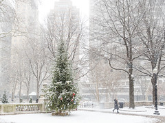 (Brian Collins Photography) Tags: briancollins brianjamescollins city christmas ih8nyyanks pa pennsylvania philadelphia philly rittenhousesquare bc cityscape december seizethelight snow winter winterscene md usa