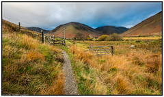 Wasdale Fells, Cumbria. (steve.gombocz) Tags: landscape nikon nikond810 nikoneurope nikoncamera nikobfx nikkor nikon140240mmf28 yellow green cumbria westcumbria colour colours color natureisbeautiful lakedistrict out outandabout outdoors landscapephotos landscapephography landscapephotograph scenery landscapescenes mountains hills fells crags nature wasdalefells landscapepictures nicepictures nicelandscapes flickrlandscapes