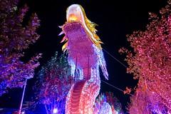 Happy Chinese New Year (alobos life) Tags: festival internacional fesiluz chile china parque santiago en familia de luces la normal quinta