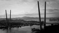 Le pont depuis la colline! Vladivostok! (8pl) Tags: pont fils suspendu vladivostok mer eau bateaux ville bâtiments montagnes paysage urbain russie extrêmeorient cityscape noirblanc