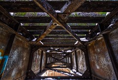 Left for Nature (Slow Death). (Nomadic Complacency) Tags: abandoned decay railroad rust urbex rurex midwest mississippiriver obsolete industrial architecture design sony sonyalpha sonya6000 1927