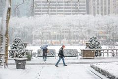 (Brian Collins Photography) Tags: 2015 briancollins d750 ih8nyyanks march nyc newyork newyorkcity nikon bc firstdayofspring snow spring springsnow ny unitedstates