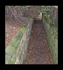 Outside Somerhiil House 05 (mini-b) Tags: somerhill somerhillschool scenery davigdorgoldsmids built1611 jacobean takenin2011 reeditedin2020 aurorahdr2018 canon eos5dmkii ef24105mm14lisusm