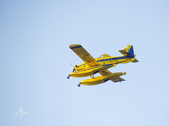 Fire Fighting Aircraft on way to a fire (caralan393) Tags: plane seaplane yellow flight