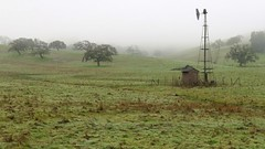 Foggy start for our hike (openspacer) Tags: fog mercedcounty pachecostatepark structure windmill