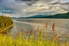 Rain Shower over Big Fox Lake (MIKOFOX ⌘ 2020 Vision) Tags: hdr mikofox fujifilmxt2 canada lake squall shower provia storm grass showyourexif forest water rain learnfromexif summer mountains xt2 landscape august 1801350mmf3556