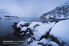 Kvaløya, Norway (Naomi Rahim (thanks for 5 million visits)) Tags: kvaløya travel winter nature norway outdoors nikon arctic scandinavia tromsø 2020 travelphotography nikond7200 blue snow water landscape wanderlust fjord polarnight
