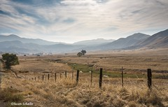 Tulare County (Photosuze) Tags: california sky mountains clouds fence landscape oaks ranchland tularecounty autumn fall hills grasslands