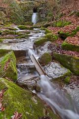 7R400112 (ivoräber) Tags: creek bach wald forest water waterfall wasser wasserfall moos sony switzerland systemkamera swiss schweiz suisse