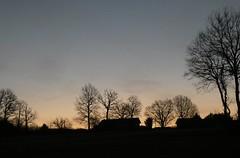Dawn's silhouettes (Jeffxyz) Tags: trees dawn daybreak