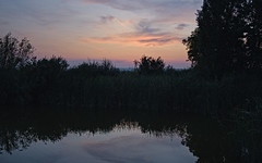 neusiedel_evening_03+1 (rhomboederrippel) Tags: rhomboederrippel fujifilm xe1 august 2019 europe austria burgenland neusiedlamsee summer eveninglight sunset lake neusiedlersee water reed green blue orange cloud