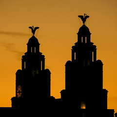 Liver Buildings (stephenbryan825) Tags: britain england europe greatbritain liverbird liverbuilding liverpool merseyside northwest royalliverbuilding uk unitedkingdom architecture buildings construction dusk dwelling edifice glass manmade property silhouettes structure