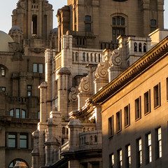 Golden Architecture (stephenbryan825) Tags: britain england europe greatbritain liverbird liverbuilding liverpool merseyside northwest royalliverbuilding uk unitedkingdom architecture buildings construction dwelling edifice glass manmade property structure