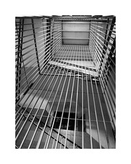 Cárcel Modelo IV (BLANCA GOMEZ) Tags: spain bcn barcelona bw blackwhite light shadows textures pov puntodefuga cárcelmodelo centropenitenciariodehombresdebarcelona lamodelo historicallandmark arquitectura architecture arquitectos josepdomènechiestapà salvadorvinyalsisabaté railings floors stairs escaleras