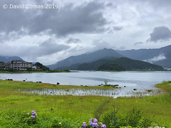 Fujikawaguchiko - Yagizaki Park (CATDvd) Tags: catdvd davidcomas httpwwwdavidcomasnet httpwwwflickrcomphotoscatdvd appleiphone8 estadodeljapón estatdeljapó japan japó japón nihon nihonkoku niponkoku nippon stateofjapan 日本 日本国 july2019 landscape paisaje montaña mountain muntanya lago lake llac llocprefacturadekantō prefecturadeyamanashi yamanashiprefecture yamanashiken 山梨県 fujikawaguchiko fujikawaguchikomachi 富士河口湖町 llackawaguchi 河口湖 lakekawaguchi kawaguchiko lagokawaguchi paisatge