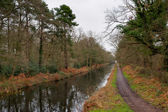 Photo of Basingstoke Canal near Pirbright-G1230460