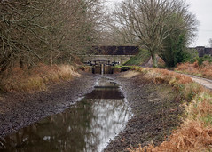 Photo of Basingstoke Canal at Brunswick Road Bridge-G1230437