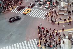 2019.12.09-澀谷十字路口、東急Plaza表參道原宿 (o331128) Tags: street japan walking tokyo nikon dslr d850 japantravel photography photo 日本 東京 旅行 攝影