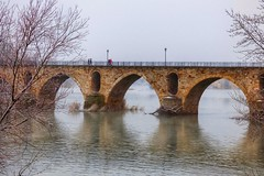 Niebla invernal (carmengonzalez23mayo) Tags: zamora spain castillayleon landscape winter frog river europe duero douro bridge arquitectura stone old antiguo people lone