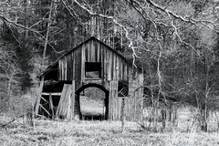 Busy (Dysfunctional Photographer) Tags: barn wood decay trees monochrome blackwhite rural arkansas perryville 2020 usa nikon z7 nef raw lr