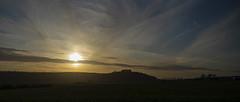 contre jour copse (Redheadwondering) Tags: sonyα7ii minolta minolta100200mm buxburyhill cranbornechase copse contrejour clouds sun goldenlight 26contrejour 26 trees fovant landscape
