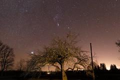 Orion's belt (JaaniicB) Tags: canon eos 77d sigma 1835mm f18 stars stargazing latvia night shot galaxy astrometrydotnet:id=nova3915507 astrometrydotnet:status=solved