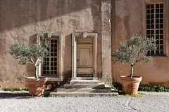 olive trees (Mister.Marken) Tags: madeinfrance marseille door trees shadows