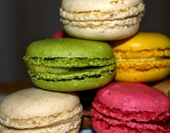 Macaroon pile (Tony Worrall) Tags: colours colourful sweet biscuit pile sugar mac macaroons fill filling photos photograff things uk england food foodie grub eat eaten taste tasty cook cooked iatethis foodporn foodpictures picturesoffood dish dishes menu plate plated made ingrediants nice flavour foodophile x yummy make tasted meal nutritional freshtaste foodstuff cuisine nourishment nutriments provisions ration refreshment store sustenance fare foodstuffs meals snacks bites chow cookery diet eatable fodder ilobsterit instagram forsale sell buy cost stock