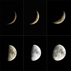 Waxing Moons (Epiphany Appleseed) Tags: waxing moon astro astronomy astrophotography astrophysics moonscape january 2020 lunar cratersonthemoon
