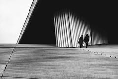 Paris (tomabenz) Tags: france noiretblanc stripes light shadow people streetshot bw sony a7riv urban street photography paris human geometry noir blanc monochrome streetview black white europe bnw contrast blackandwhite humaningeometry lightandshadow sonya7riv streetphotography