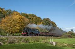 DR 95.1027 Schwallungen 09/10/2010 (stefano.trionfini) Tags: train treni bahn zug railway steam dampf dr br95 thüringen werra germania deutschland