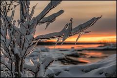 Fire and Ice (Jonas Thomén) Tags: ice is sunset solnedgång snö snow sea hav havet moln clouds shore strand stenar rocks cliffs klippor lillsand kurudden istappar icicles evening kväll landscape landskap