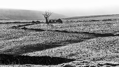 Winnats Pass (Maisiebeth) Tags: peakdistrict winnatspass derbyshire walking landscape scenery dramatic england