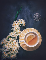 Narcissus Still Life (Ro Cafe) Tags: stilllife tabletop fromabove flatlay tea cupoftea flowers yellow narcissus daffodils teainfuser black nikkor2470mmf28 sonya7iii textured naturallight