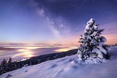 Take one last look at this sacred heart ... (Rogg4n) Tags: switzerland night nightphotography nightscape astro star dawn landscape panorama swiss suisse hills jura mountain snow winter wonderland snowy hiver sigma canon stars astrophotography sky sykscape nature tree longexposure silhouette galaxy milkyway voielactée milky way canoneos5dmarkiii ef1635mmf4lisusm