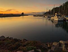 Marina Glow (Rick Derevan) Tags: california sunset marina boats golden harbor goldenwater pleasureboats morrobaystatepark mbsp ngc