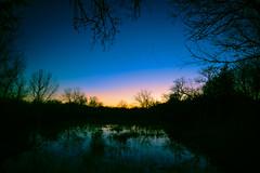 Cranes at Sunset (RWGrennan) Tags: fort sunset reflection nebraska state crane dusk flight ne swamp area recreation sandhill gibbon kearny river nikon midwest ryan reflect platte d610 grennan rwgrennan rgrennan trees winter sky blue