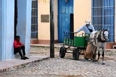 Ecological Transport (emerge13) Tags: cuba trinidadsanctispirituscuba trinidadcuba people humans candid plazamayortrinidadcuba horse horses animal animals cobblestonestreets street streets colorfulstreets