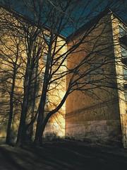 House Corner (chumaroza_planet) Tags: санктпетербург петербург saintpetersburg petersburg russia mobilography digital мобилография цифра snapseed trees house branches colour цветное деревья ветви тени shadows